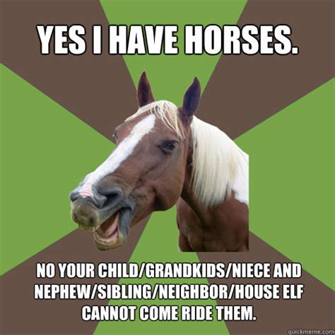 Funny Horse Memes - fuck yeah equestrians