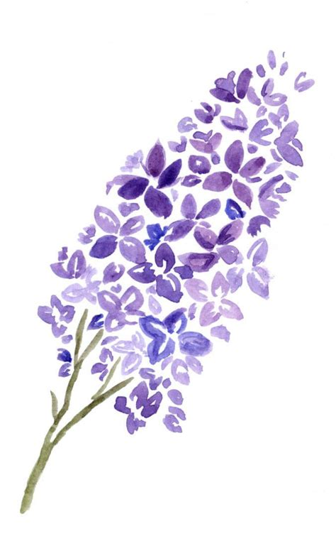 lilac tattoo designs lilac is a wonderful flower an expression of