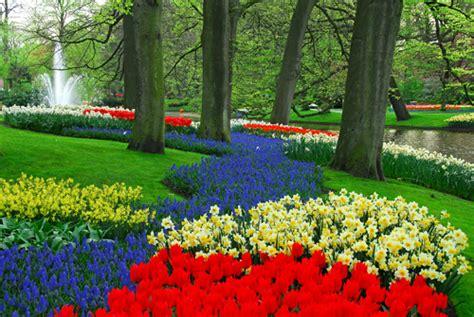 Keukenhof Tulip Gardens Tour Amsterdam Book A Keukenhof Flower Garden In Amsterdam