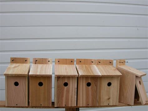 6 wren bird houses nest red cedar hole size 1 1 8 ebay