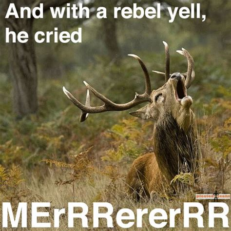Funny Hunting Memes - elk hunting funny quotes quotesgram