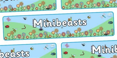 biography banner ks2 43 best images about eyfs understanding the world on pinterest