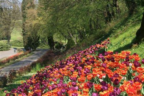 il parco giardino sigurt 195 ha la fioritura pi 195 185 d