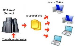 Dedicated web host services are the best choice website design seo