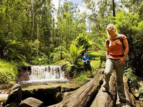 Walking and hiking outdoor activities victoria australia