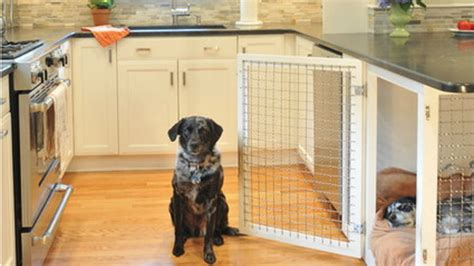 dog inside house 12 indoor dog houses that we think are pawsitively genius