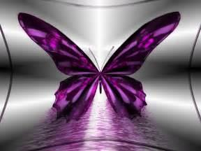 wallpaper butterfly wallpapers