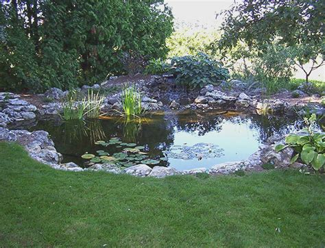 pond in backyard large backyard ponds