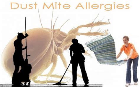acari materasso prurito allergie come eliminare gli acari della polvere con i
