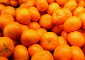 Outlook for florida oranges the state s signature crop falling www
