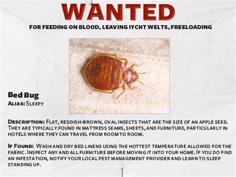 pest control  funny guide readers digest