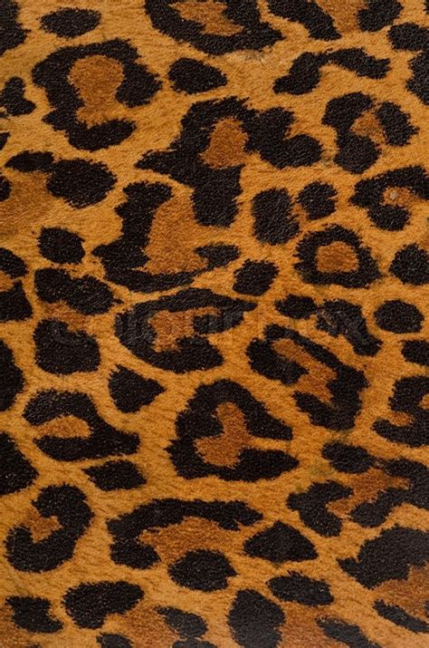 leopard pattern image leopard print pattern stock photo colourbox