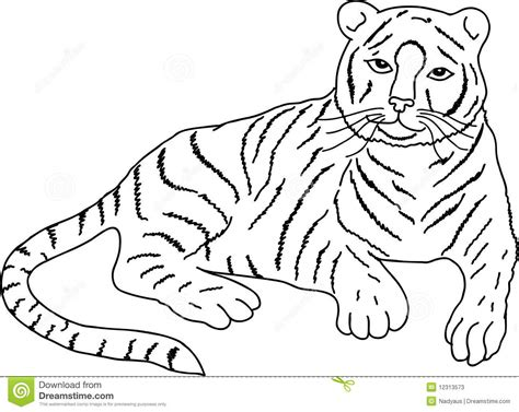 how to draw a doodle tiger drawing of lying tiger vector stock photos image 12313573