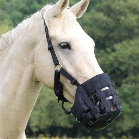 comfort muzzle comfort grazing muzzle from shires equestrian