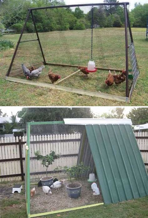 backyard chicken coop designs 22 low budget diy backyard chicken coop plans