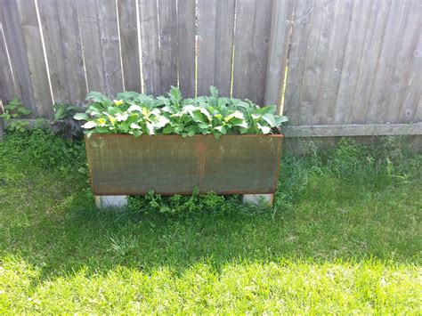 Growing Herbs In Planters by Growing Herbs And Vegetables In Corten Planters
