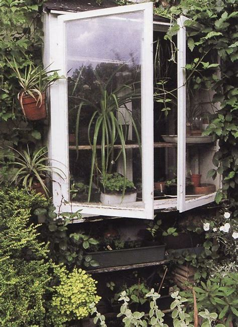 Window Garden Plants Kitchen Window With All The Plants A Technology Is