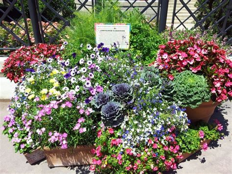 container gardening pictures container garden ideas inspired by epcot center go