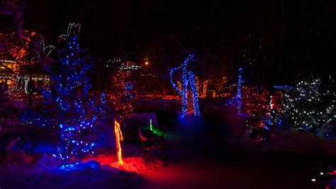 Calgary Zoo Christopher Martin Photography Zoo Lights Calgary