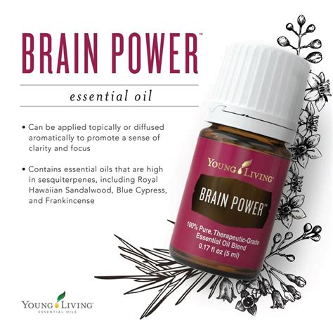 Brain Power Living Essential 5ml 1886 Best Youngliving Org Ak1521 Images On