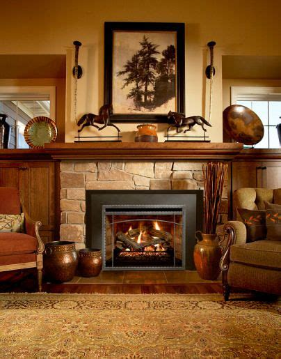 Decorative Gas Fireplace Inserts by 24 Best Redoing Our Fireplace Later Images On