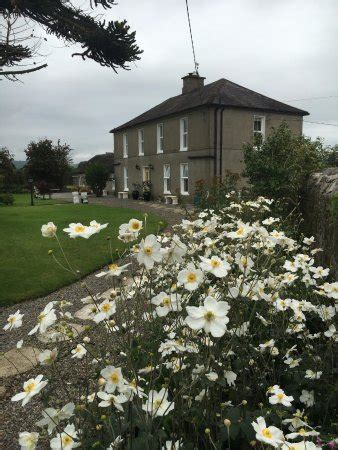 yard house brunch front yard picture of kilcannon house bed breakfast dungarvan tripadvisor