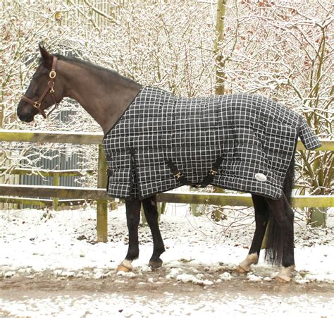 rugs for horses for sale 100 stable rugs for sale shires tempest 200g stable rug u0026 detachable neck set choose