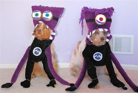 minion costumes for dogs minions