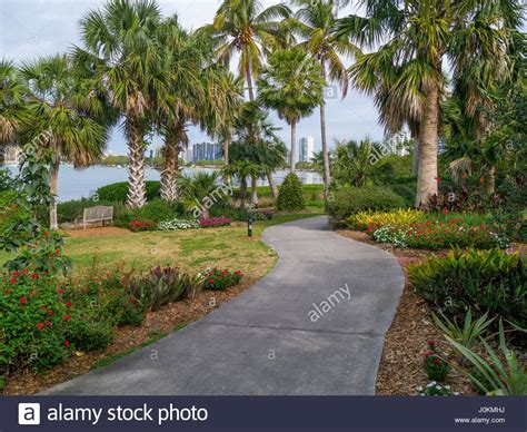 Botanical Gardens Sarasota Fl Selby Botanical Gardens In Sarasota Florida Stock Photo Royalty Free Image 138116206 Alamy