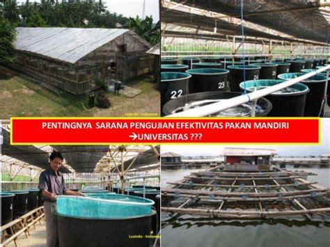 Pakan Udang Tata kebijakan pengadaan dan peredaran pakan ikan dan udang