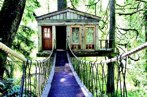 treehouse bed and breakfast 17 best images about b b tree houses on pinterest