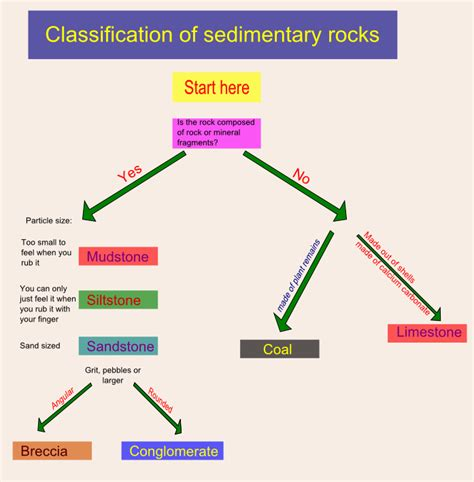diagram of how sedimentary rocks are formed the gallery for gt sedimentary rock formation diagram