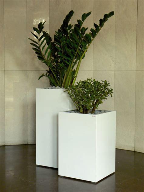 fioriere da interno lizart fioriere in metallo 187 acciaio colorato interno