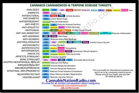 the medicinal value of terpene testing cannabis kurple magazine augmented cannabis cannabis digest