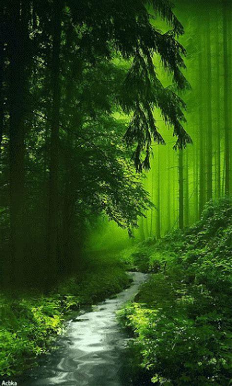 imagenes bonitas de paisajes naturales con movimiento 8 im 225 genes con movimiento de paisajes