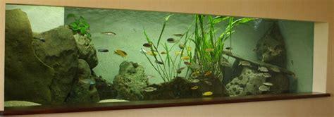 aquarium guide d achat