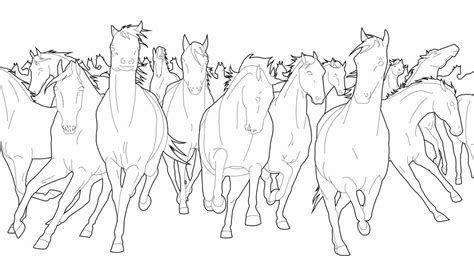 herd of horses coloring pages stede free line art by delightsjd on deviantart