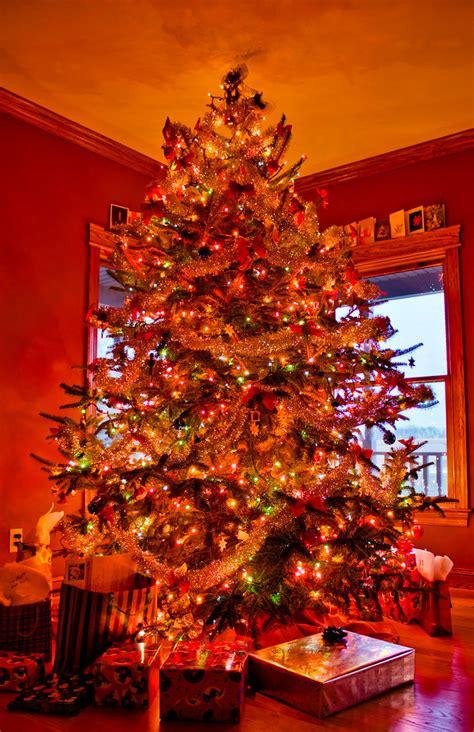 christmas tree matt janicki flickr