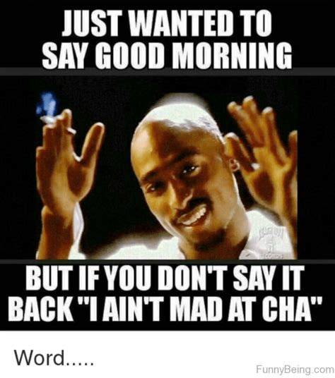 funniest good morning memes