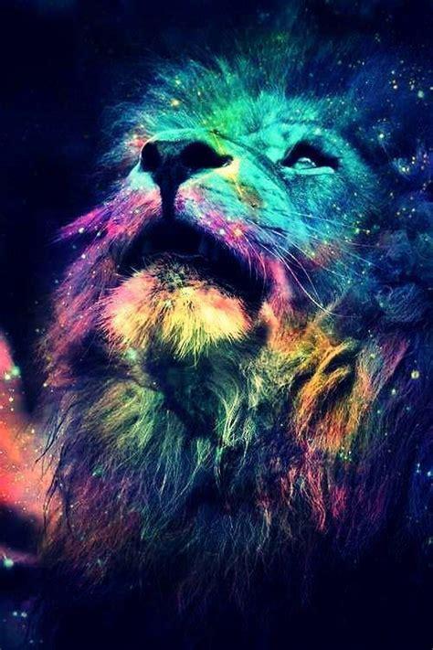 imagenes de leones swag pensieri in rotta basta guardarla