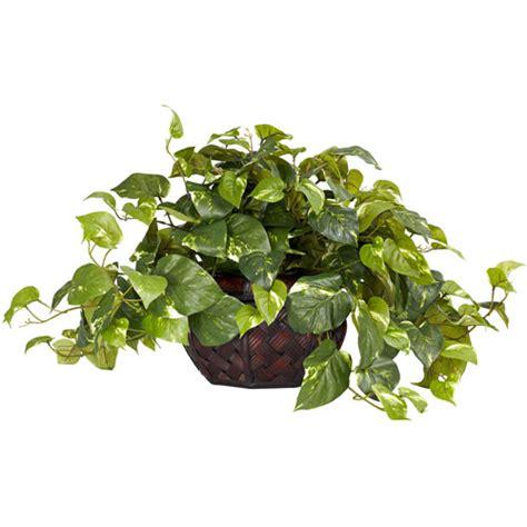 pothos with decorative vase silk plant walmart com