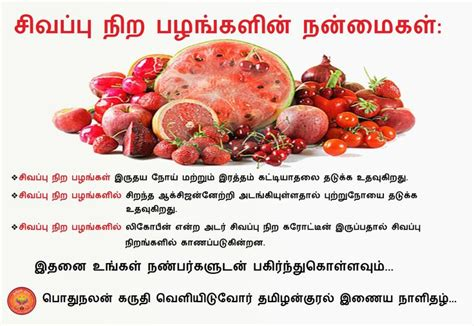 vitamin e vegetables list in tamil weight loss diet meal plan pdf healthy vegetables list in