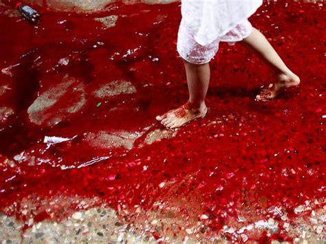 The Of Blood rivers of blood flow on streets of dhaka after eid animal