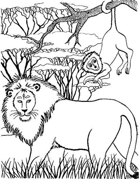 coloring pages animals realistic lion lion coloring pages coloringpages1001 com