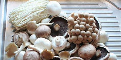 Coklat Alfabet Cantik Dengan Berbagai Macam Rasa Buah mengenal berbagai macam jenis jamur yuk merdeka