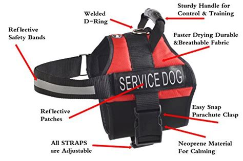 anxiety service expawlorer anti anxiety stress relief service harness reflective calming