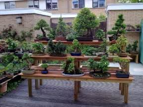 Diy Garden Benches Building A Bonsai Bench Bonsai Empire