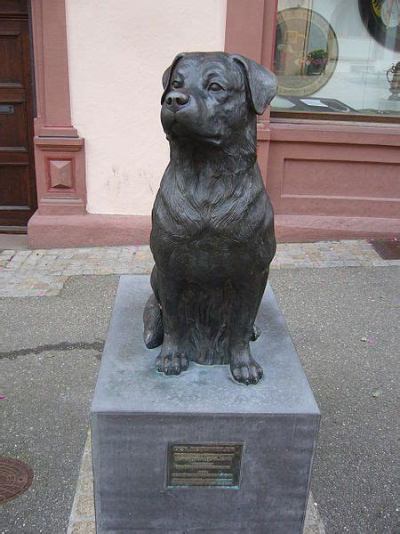 rottweiler statue rottweiler memorial in rottweil germany rotties rule germany and