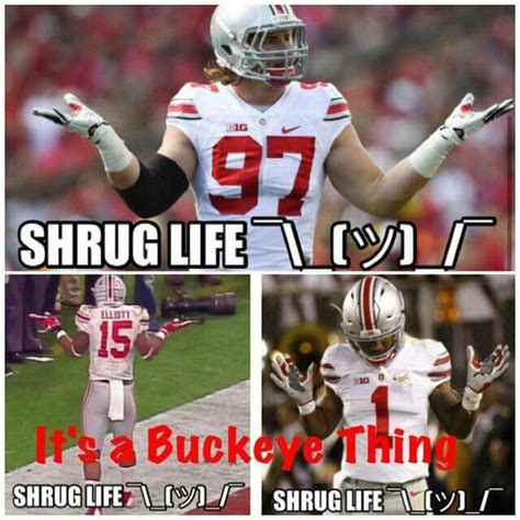 Ohio State Football Memes - 319 best images about ohio state sports on pinterest