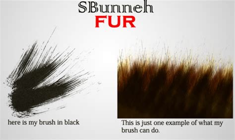 download hair brushes for photoshop cs3 30 fluffy fur photoshop brushes for free naldz graphics